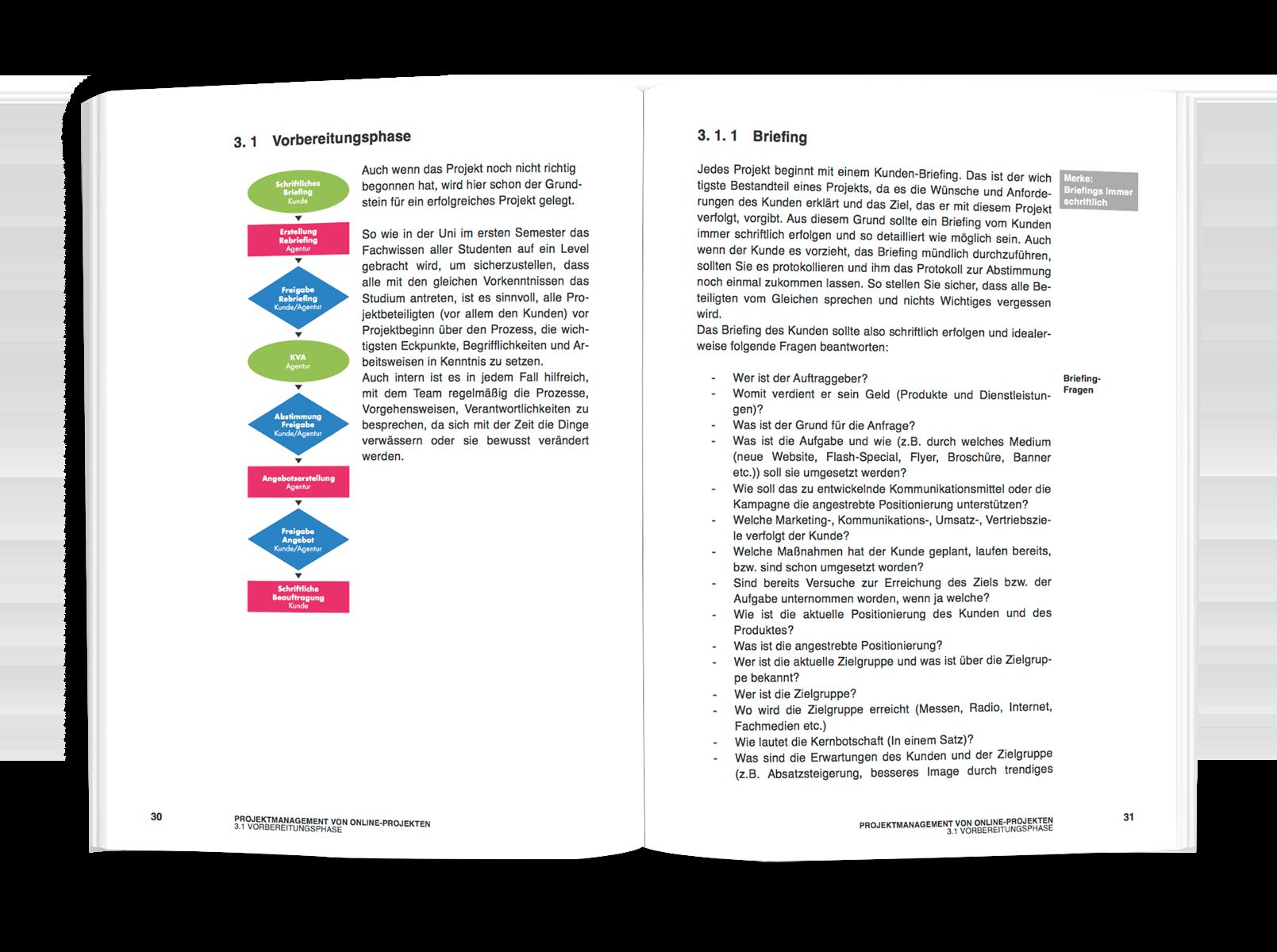 Projektmanagement von Online-Projekten - Projektprozesse